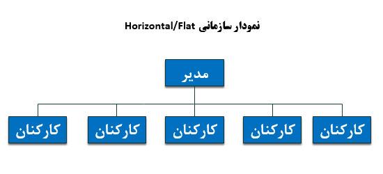 ساختار سازمانی افقی