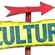 فرهنگ 5S